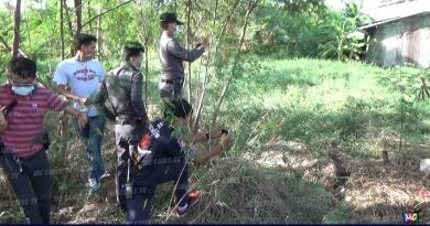 ฆ่าพม่า