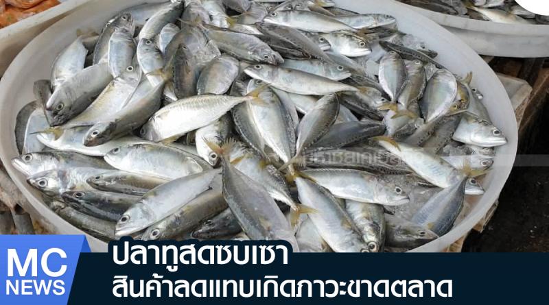 s - ปลาทูซบเซา-01