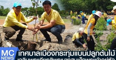 tp-ปลูกต้นไม้1