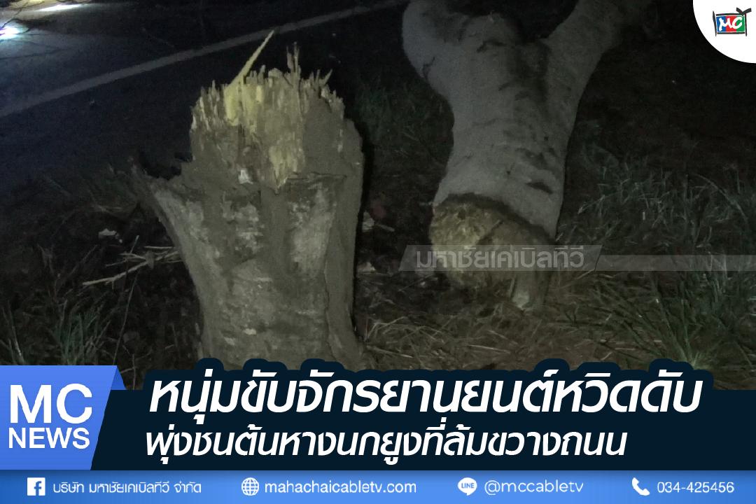 s - ชนต้นหางนกยูง-01